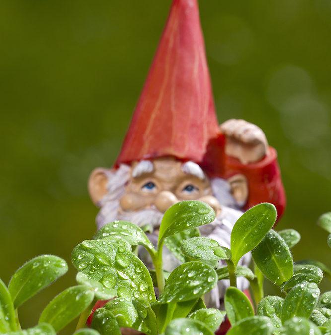The Great Garden Heist (free short story)